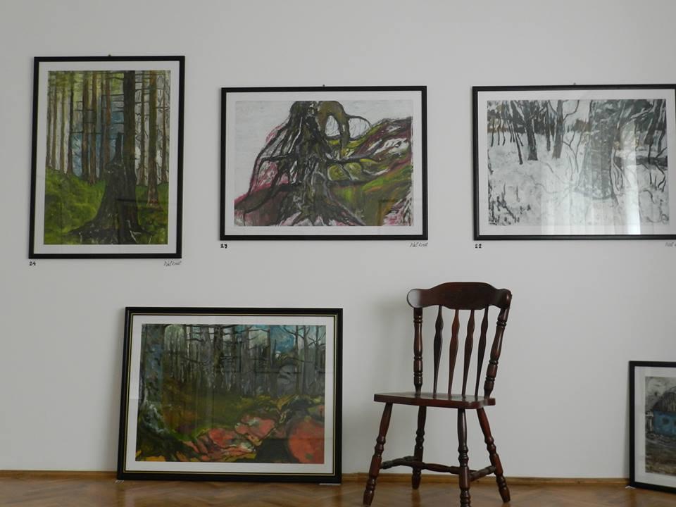 Pal galeria 2.jpg